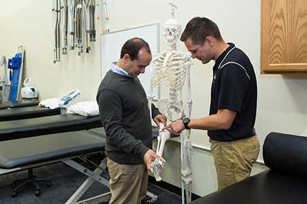 two faculty members examining a leg bone of skeleton