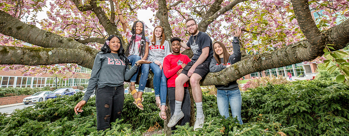 Six students sitting in tree with spring foliage
