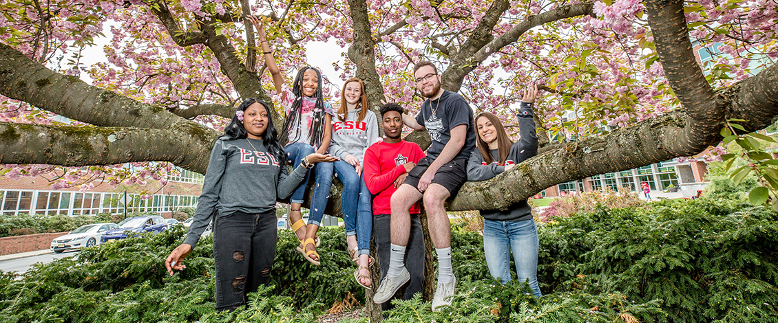 Students standing together and sitting on a tree